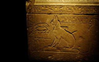 Маленькие боги: кошки Древнего Египта