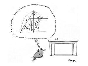 кошка рассчитывает траекторию